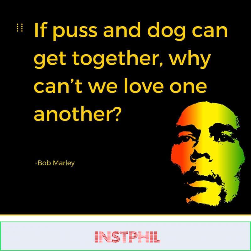 Puss and dog. —Bob Marley
