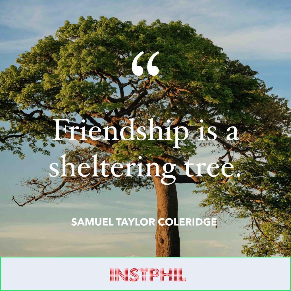 Samuel Taylor Coleridge quote