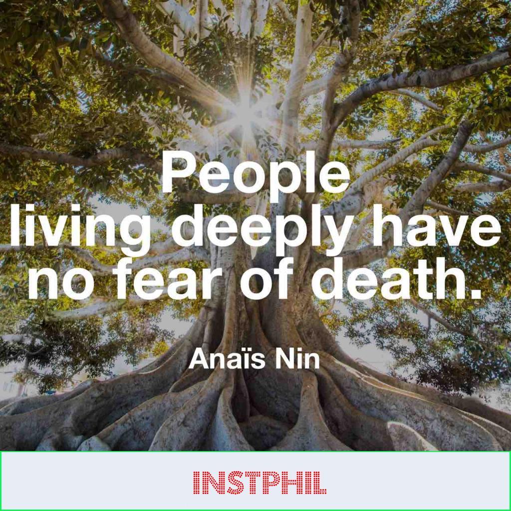 Anaïs Nin quote