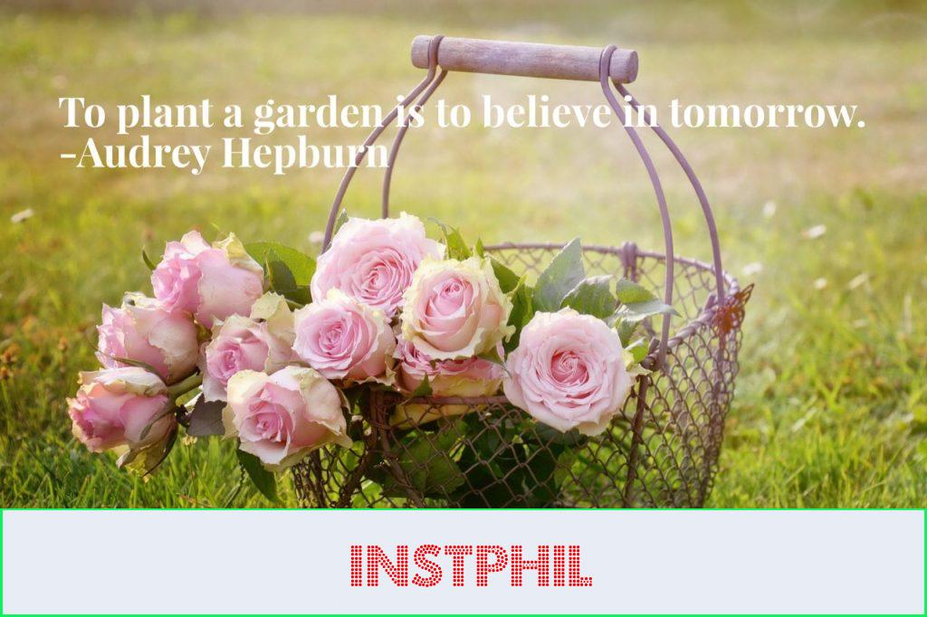"""""""To plant a garden is to believe in tomorrow"""""""