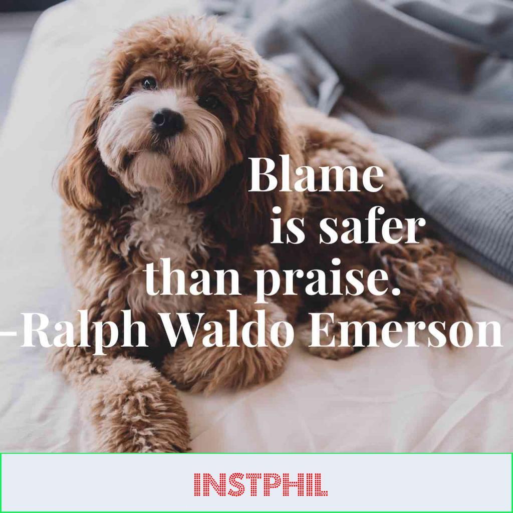 "Ralph Waldo Emerson quote ""Blame is safer than praise"""