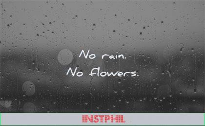 short quotes no rain flowers wisdom
