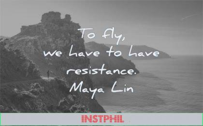 success quotes fly have have resistance maya lin wisdom landscape nature sea